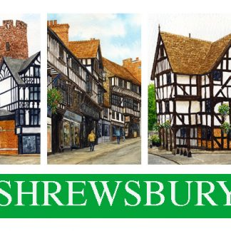 Shrewsbury Magnets